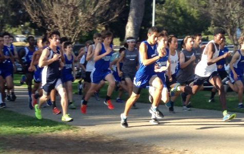 Cross Country Team Impresses Once Again