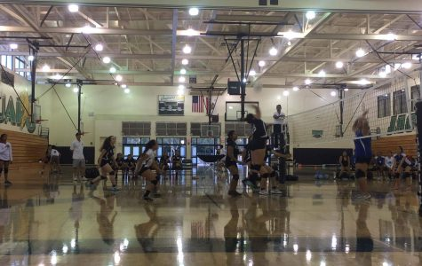 Girls' Volleyball Back in Action