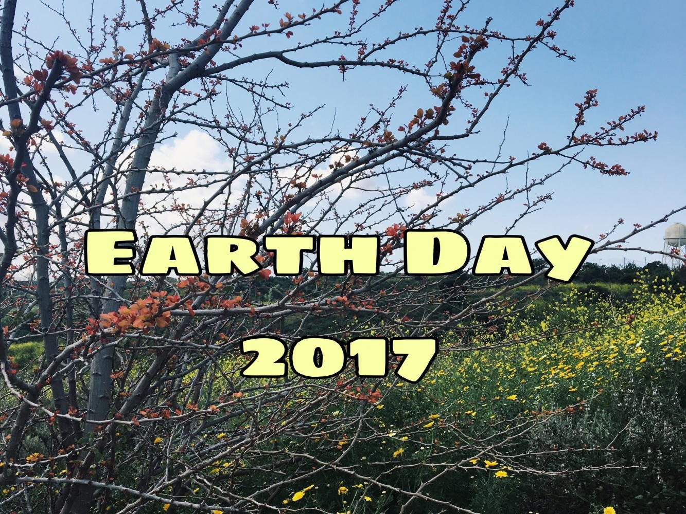 Earth Day 2017. Photo by Diana R.