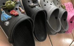 The Croc Comeback