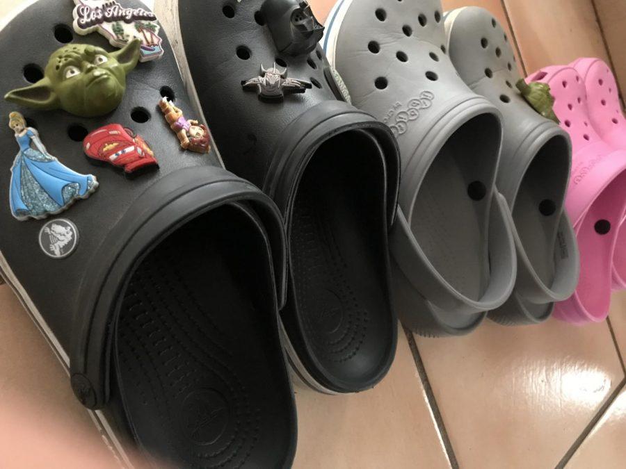 The+Croc+Comeback
